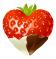 strawberry chocolate vector image