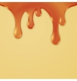 Drips Abstract Background Caramel Honey vector image vector image