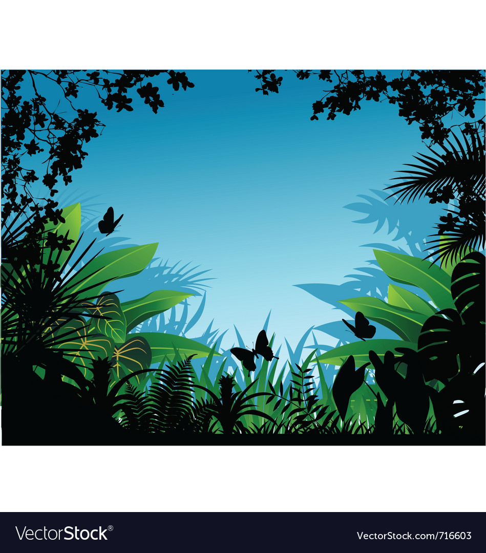 Tropical forest vector