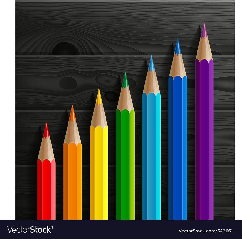 Infographic rainbow colored pencils diagonal vector