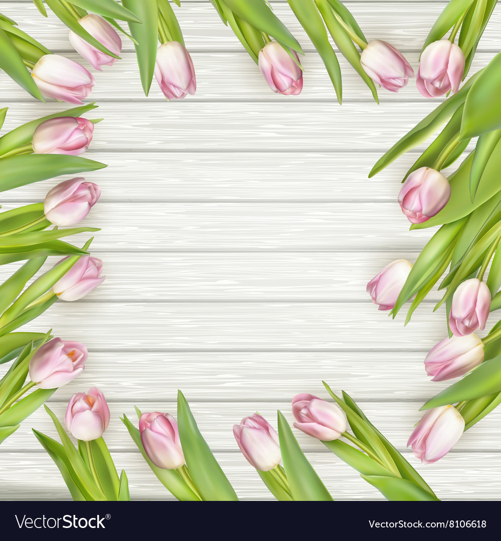 Frame of pink tulips eps 10 vector