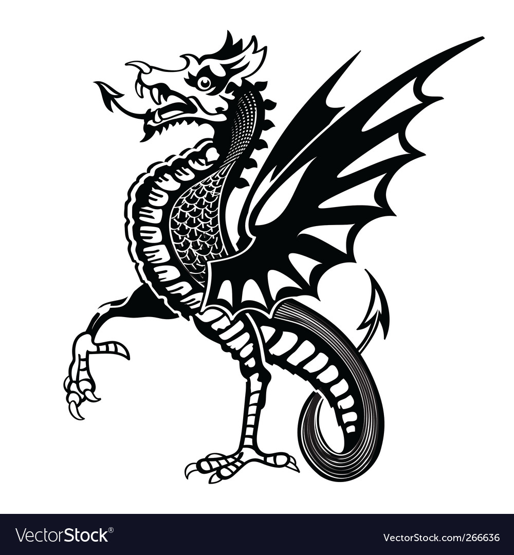 Medieval dragon vector