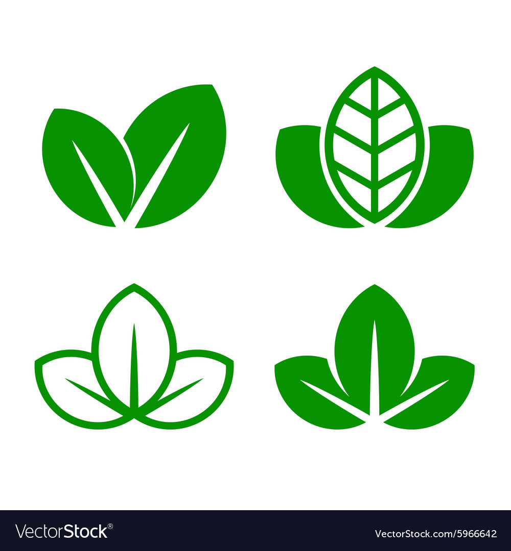 Eco green leaf icon set vector