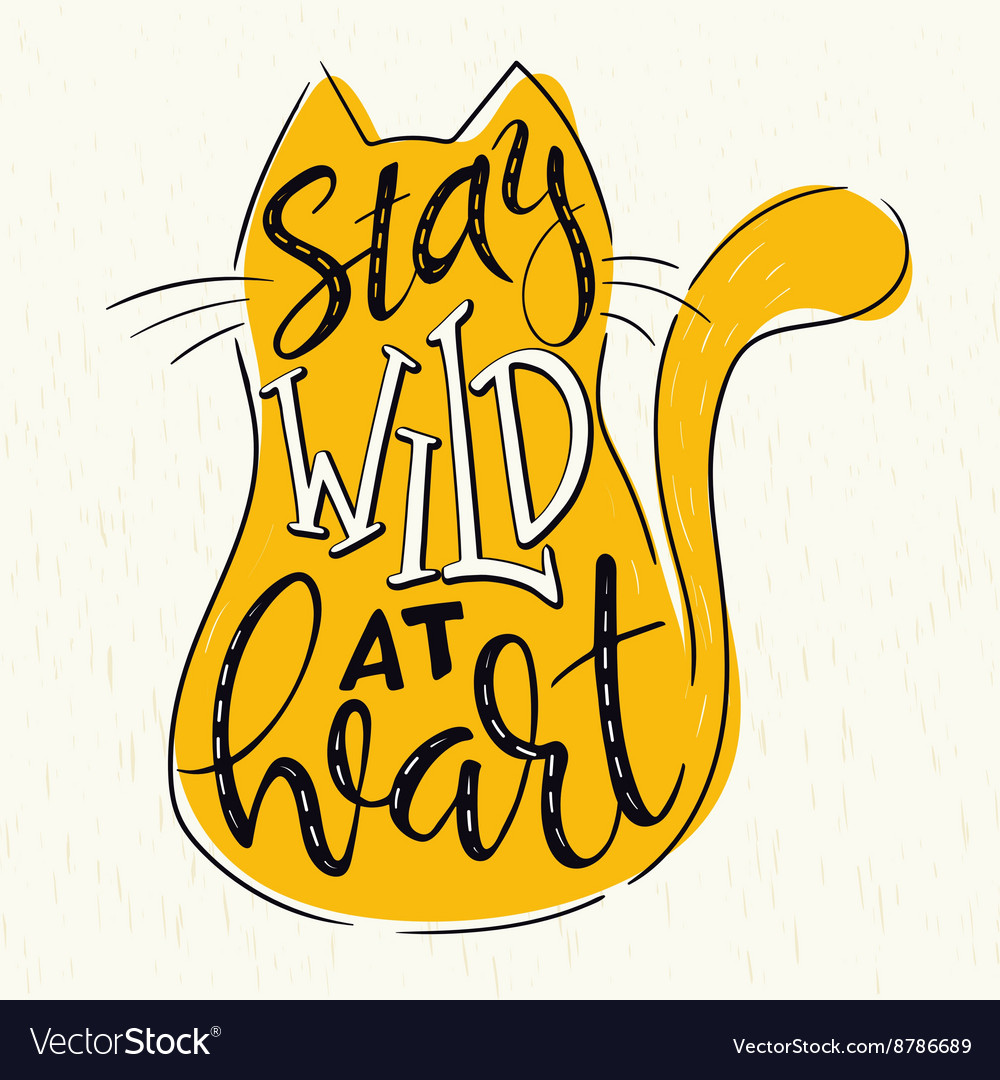 Hand lettering quote  stay wild at heart  in cat vector
