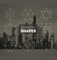 abstract regular geometric shapes set vector image