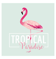Tropical Bird Flamingo Background Summer Design vector image vector image
