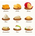 Set of different kinds of cheese on cutting board vector image