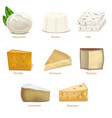 realistic detailed 3d cheese different types set vector image