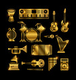 shiny golden classic music instruments vector image