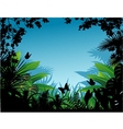 tropical forest vector image