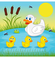 mother duck with ducklings on lake vector image