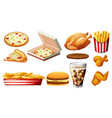 different types of fastfood and drink vector image
