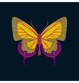 Colorful icon of butterfly isolated on dark blue vector image