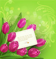 backgrouna with tulip vector image vector image