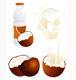 Coconut products vector image