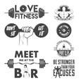 Fitness set Vintage elements and labels vector image