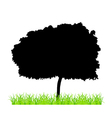 Tree And Grass vector image