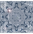 Beautiful vintage lace pattern background vector image vector image