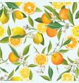 orange and lemon seamless tropical pattern vector image