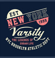 new york varsity brooklyn athletic vector image