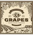 Vintage brown grapes label vector image