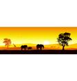 Safari In Africa vector image