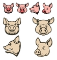 Set of pig heads vector image