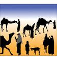 desert life vector image