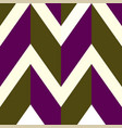 pattern with white brown purple lines vector image