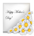 Mothers day card with daisies vector image vector image