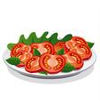 tomato salad vector image vector image