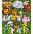 Cartoon safari animals with forest background vector image