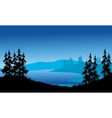 Silhouette of spruce on the backgrounds blue vector image