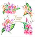 set of tropical vintage floral bouquet vector image
