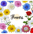 square banner various flowers with round place for vector image