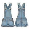 denim kids overall vector image