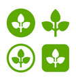 green leaf logo set eco sign vector image