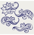 Floral baroque engraving elements vector image