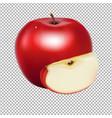 fresh apple vector image