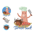 fresh beef vector image vector image