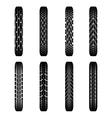 Bikes tire tracks shadows vector image