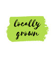 locally grown logo or sign vector image
