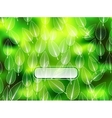 Nature abstract blurred background vector image