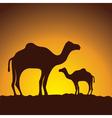 caravan of camels image design vector image vector image