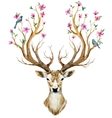 Watercolor hand drawn deer vector image