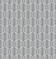 honeycombs for honey geometric seamless pattern vector image