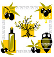 greece olive vector image
