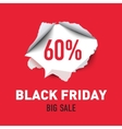 Torn hole in the sheet of red paper Black Friday vector image