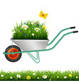 garden wheelbarrow and grass with flowers vector image