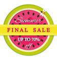 Summer final sale label watermelon colorful icon vector image